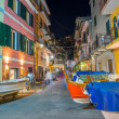Boats parked in the middle of Manarola Town, Cinque Terre — Stock Photo #55545847