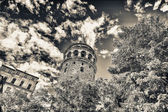 Magnificence of Galata Tower framed by trees — Stock Photo