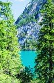 Wonderful green colors of Braies lake — Stock Photo