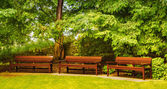 Empty benches in a beautiful park. — Stock Photo