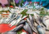 Blurred and zoomed picture of a fish market — Stock Photo