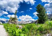 Atemberaubende Gipfel der Dolomiten — Stockfoto