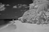 Infrared view of tropical beach — Stock Photo
