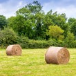Scenic landscape with hay bales on Summer day, Normandy - France — Stock Photo #72076927