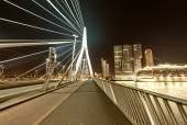 Rotterdam, Netherlands. Beautiful modern city skyline at night — Stock Photo