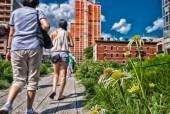 The High Line Park, New York — Stock Photo
