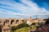 Famous italian landmark: the ancient Roman Forum (Foro Romano) w — Stock Photo