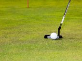Golf: putter club with white golf ball — Stock Photo