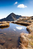 Mont Mucrone and a small mountain pond — Stock Photo