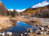Small alpine mountain pond in fall - Val Ferret, Courmayer — Stock Photo