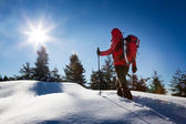 A trekker, walking in the snow, takes a rest for admire the pano — Stock Photo