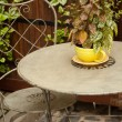 Vintage outdoors home decor. Iron chair, table and vase with a p — Stock Photo #52108265