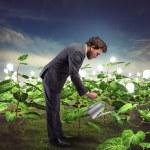 Businessman nurtures new ideas — Stock Photo #73558767