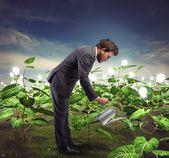 Businessman nurtures new ideas — Foto de Stock