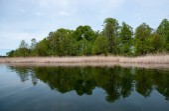Lithuania lake — Zdjęcie stockowe