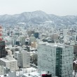 City of Sapporo as viewed from the JR Tower — Stock Photo #52273593