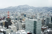 City of Sapporo as viewed from the JR Tower — Stock Photo