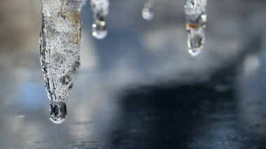 Icicles. — Stock Video