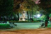 Night garden in Paris — Stock Photo