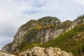 Autumn forest on the rocks — Stock Photo