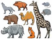 Mammals — Stock Vector