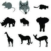 Grey mouse,lioness,rhinoceros,buffalo,elephant,giraffe,leopard,a — Stock Vector