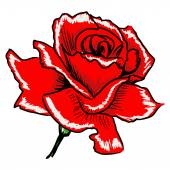 Red rose — Vetorial Stock