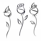 Rose blossoms isolated on white background. Vector illustration. — Stock Photo