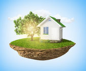 Beautiful small island with grass and tree and house levitating — Stock fotografie