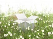 Cardboard box on the grass field — Stock Photo