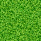 Groene bladeren textuur. vectorillustratie. — Stockvector