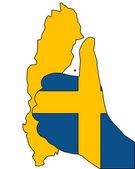 Svensk finger signal — Stockvektor