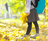 Little schooler girl in the autumn park — Stock Photo