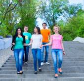Smiling group of teenagers walking outdoors — Stock Photo