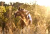 Belle femme sur un cheval — Stockfoto
