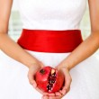 Pomegranate in hands of a bride — Stock Photo #54370039
