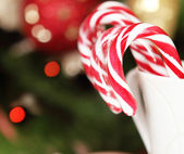 Christmas Candy Canes by the Christmas tree — Stock Photo