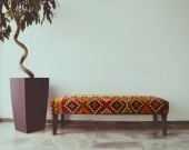 Ficus tree in living room next to a sofa — Stock Photo