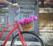 Vintage bicycle with basket with peony flowers  — Stok fotoğraf