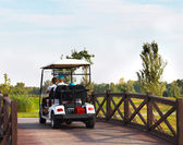 Young sportive people in the golfcar — Stok fotoğraf