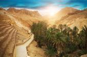 Mountain oasis Chebika, Sahara desert, Tunisia, Africa — Stock Photo