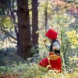 Little Red Riding Hood in the woods — Stock Photo #53021195