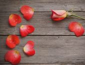 Rose and petal in form heart on wooden background — Stockfoto
