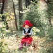 Little Red Riding Hood in the woods — Stock Photo #56967873