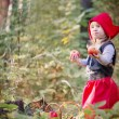 Little Red Riding Hood in the woods — Stock Photo #56968045