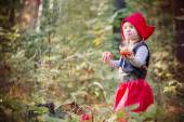 Ormanda küçük kırmızı başlıklı kız — Stok fotoğraf
