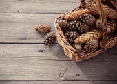 Cones on a wooden background — Stock Photo