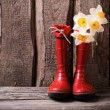 Red child garden shoes with spring flowers — Stock Photo #56981155