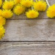 Dandelion flowers on the wooden background — Stock Photo #61804311