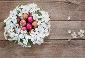 Easter egg in nest from white flowers — Stock Photo